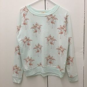 All Things Fabulous Flamingo Pullover